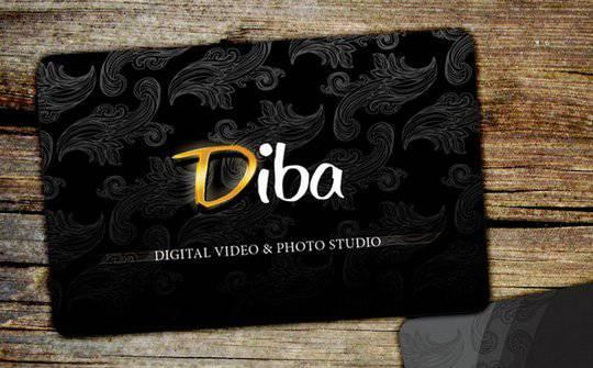 Diba Photography Business Card