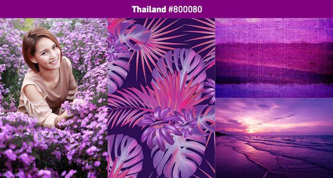 Shutterstock: Đây sẽ là 3 màu sắc thịnh hành nhất năm 2019, cả thế giới đang yêu màu tím thích màu hồng? - Ảnh 14.
