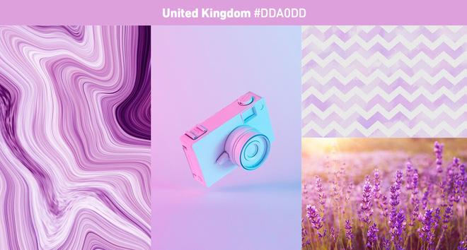 Shutterstock: Đây sẽ là 3 màu sắc thịnh hành nhất năm 2019, cả thế giới đang yêu màu tím thích màu hồng? - Ảnh 15.