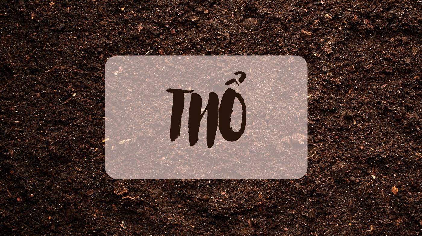 thiết kế logo cho người mệnh thổ